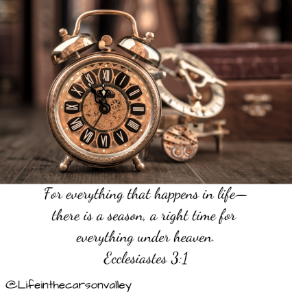 For everything that happens in life—there is a season, a right time for everything under heaven_