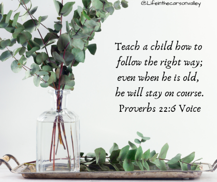 Proverbs 22_6 The Voice Teach a child how to follow the right way; even when he is old, he will stay on course.